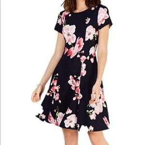 NWT Jessica Howard Cap Sleeve Fit & Flare Dress 12